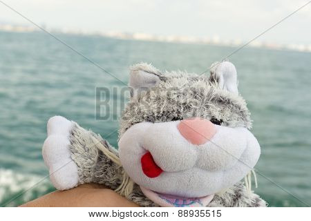 Cat And Sea