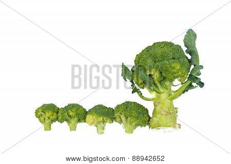 Fresh, Raw, Green Broccoli Pieces.