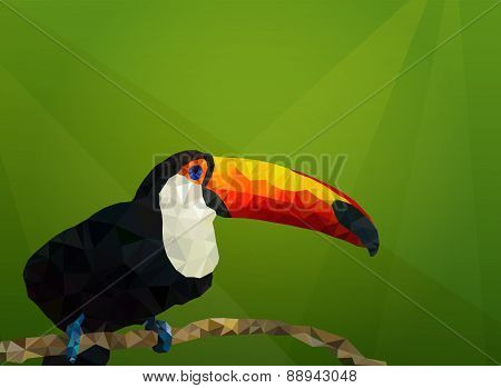 Vector backround with toucan. Low Poly, Polygonal illustration.