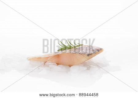 Fresh Perch Fish Fillet Isolated