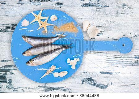 Fresh Anchovy Fish.