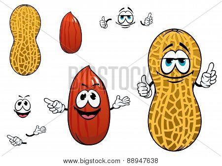 Funny kernel and pod of peanut characters