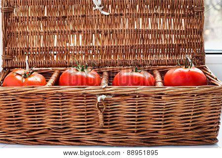 Four Tomatoes In Wicker Retro Box