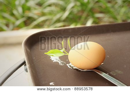 Egg On A Spoon With Mint Leaves.