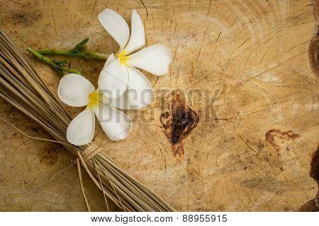 White Plumeria Classic Brown Wooden Floor Surface.
