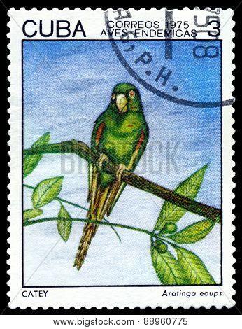 Vintage  Postage Stamp.  Bird Ataringo Eoups.