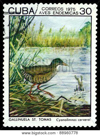 Vintage  Postage Stamp.  Bird Cyanolimnas Cerverai.