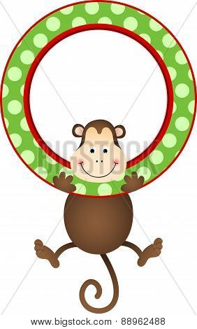 Monkey hanging in a frame