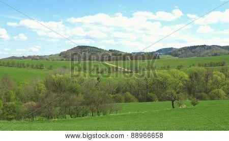 nice landscape in spring