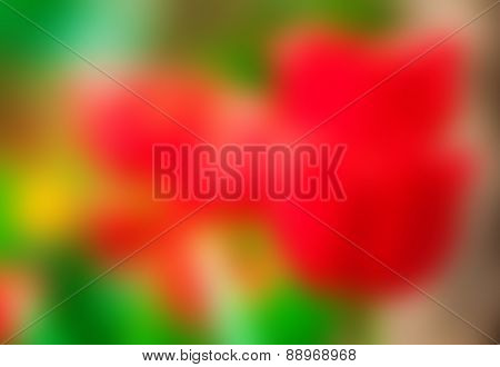 Blurred Abstract Spring Background
