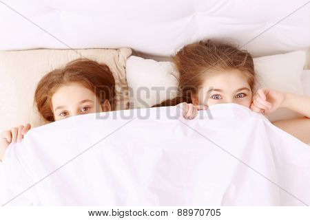 Little hilarious girls covered with blanket.