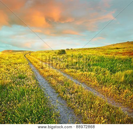 Summer landscape with green grass, road and sunset clouds