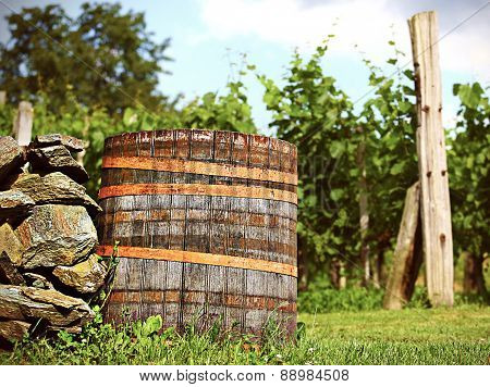 Barrel In Wineyard In The Sunset