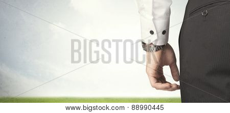 Businessman from the back in front of an empty meadow