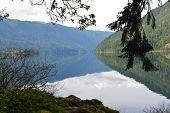 foto of olympic mountains  - Reflection on Lake Crescent in Washington States Olympic Peninsula - JPG