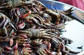 foto of stall  - Food stall on the street that selling crab  - JPG