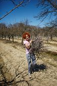 picture of spring-cleaning  - Caucasian woman spring cleaning the orchard carrying cut branches to throw them away - JPG