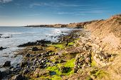 foto of bathing  - The rocky coastline near Howick in Northumberland with the Bathing House at the end of the low cliffs on the horizon - JPG