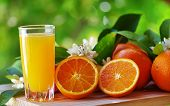 stock photo of orange-juice  - Orange juice in glass blossom and slice of orange fruit - JPG