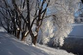 stock photo of ekaterinburg  - Frost on the trees on the embankment of the Iset River in Yekaterinburg - JPG