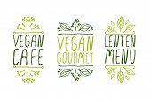 image of vegan  - Hand - JPG