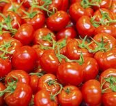 picture of stall  - real organic tomatoes at a market stall - JPG