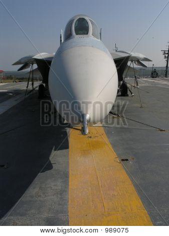 F14 Tomcat Nose