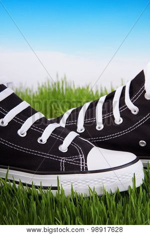 Black Shoes On A Green Grass