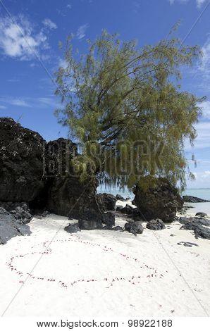 Landscape Of  Arutanga Island In Aitutaki Lagoon Cook Islands