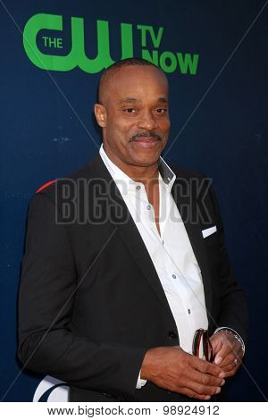 LOS ANGELES - AUG 10:  Rocky Carroll at the CBS TCA Summer 2015 Party at the Pacific Design Center on August 10, 2015 in West Hollywood, CA