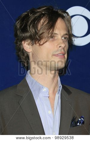 LOS ANGELES - AUG 10:  Matthew Gray Gubler at the CBS TCA Summer 2015 Party at the Pacific Design Center on August 10, 2015 in West Hollywood, CA
