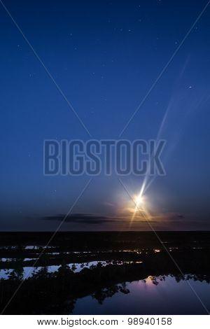 Stars in the moonlight