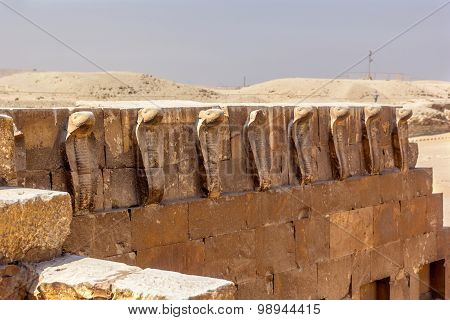 Cobras Of Djoser Tomb