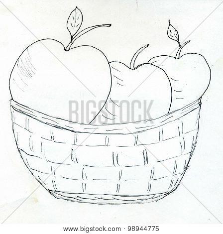 Wicker Basket Sketch