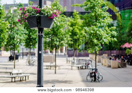Street Lamp Decorated With Fresh Flowers. Eindhoven, Netherlands
