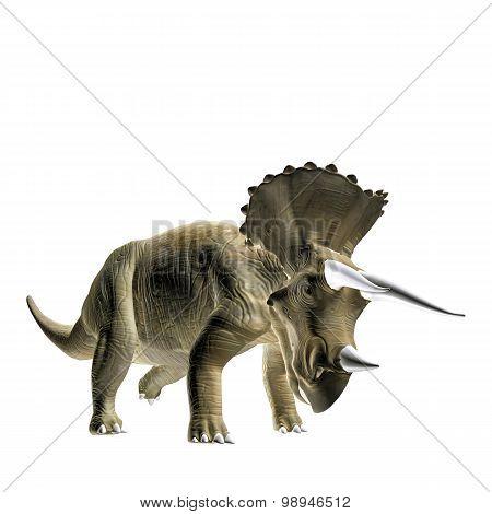 Triceratopos
