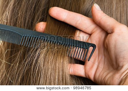 Hand Of Hairdresser With Strand Of Hair And Comb