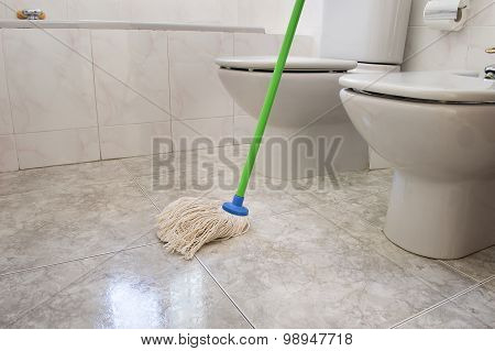 Scrubbing Bathroom With A Mop Gray