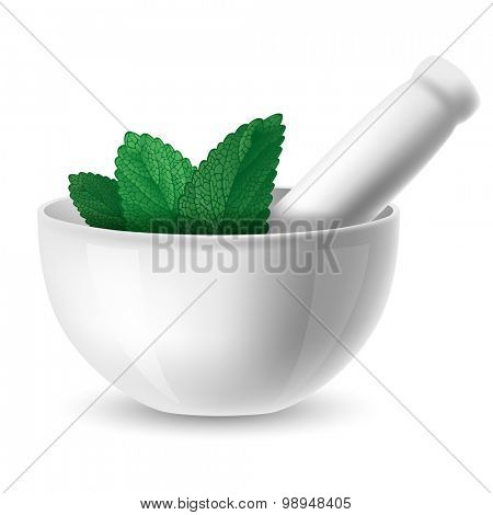White ceramic mortar and pestle with green herbal leaf. Vector illustration. Isolated on white background.
