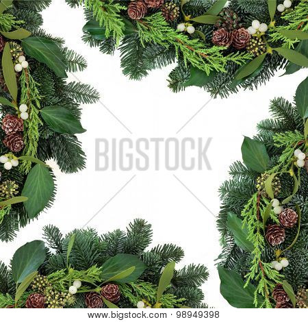 Mistletoe background border with ivy, pine cones and blue spruce fir over white background.