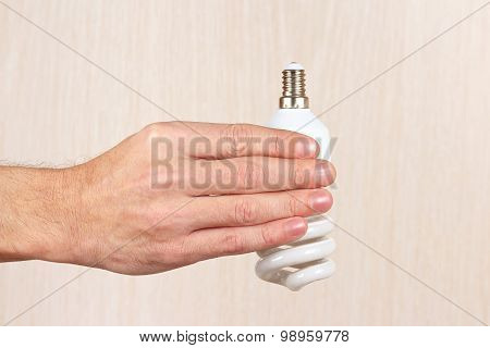 Hand holding a tungsten lightbulb on light wood background