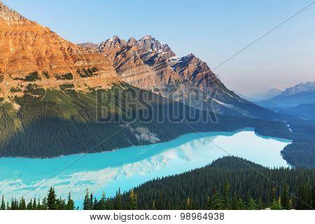 Peyto Lake  in Banff National Park,Canada