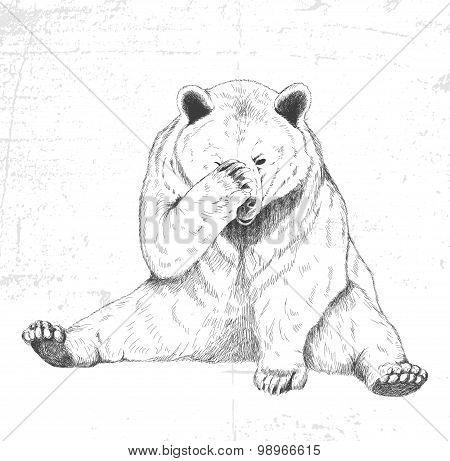 Sad bear. Sketch. Handmade.