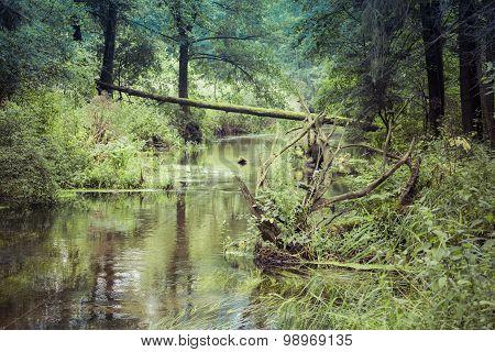 River Black Hancza. Suwalsczyzna. Poland