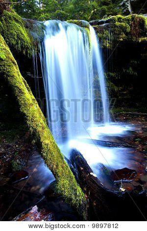 Fern Falls.