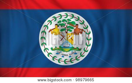Flag of Belize - vector illustration