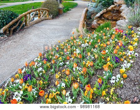 Spring Flowerbed In Park.