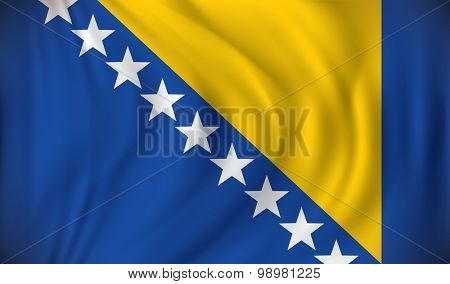 Flag of Bosnia and Herzegovina - vector illustration