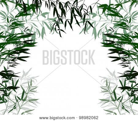illustration with green bamboo branches frame isolated on white background