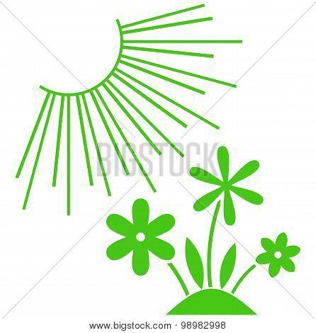 Vector Green Plants Under Sun Illustration Isolated On White
